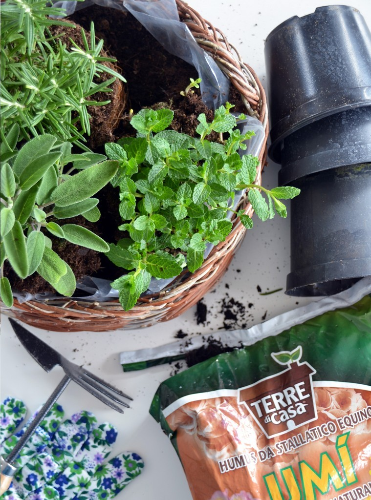 DIY Herb Basket - herbs