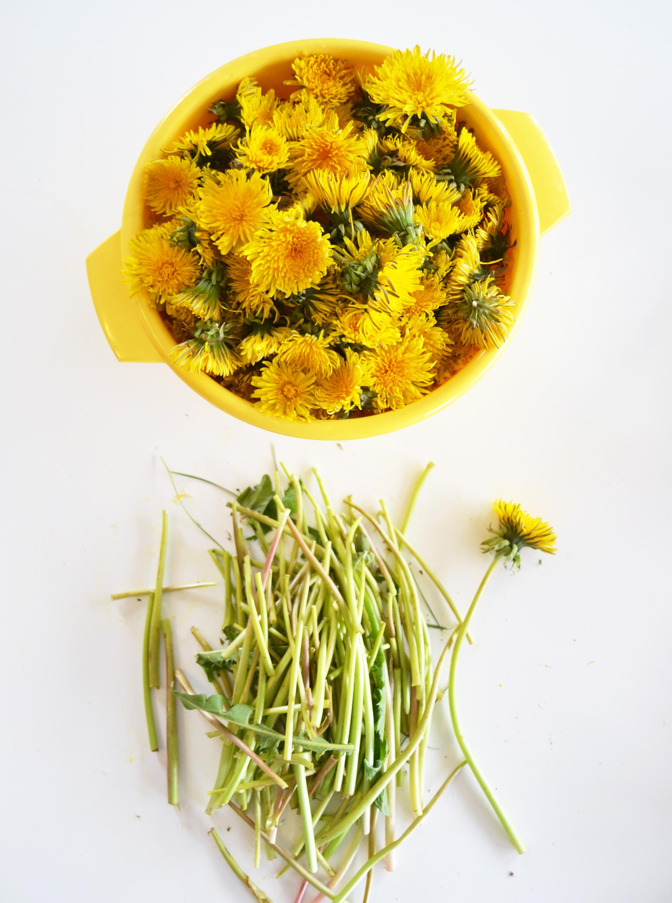 miele di tarrasaco